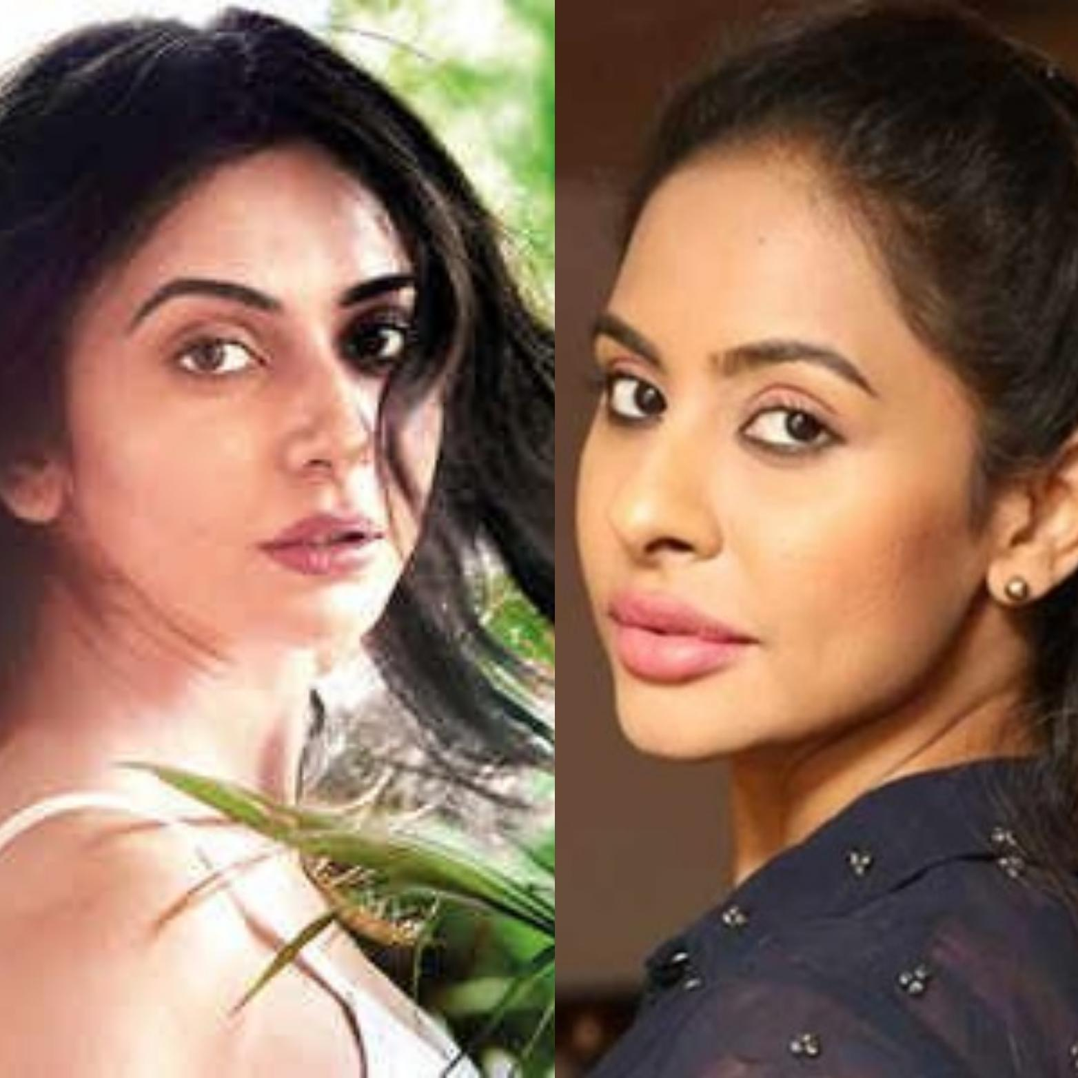 Sri Reddy Smashes Rakul Left Right With Her Statements