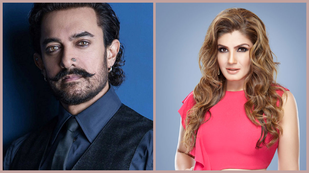 When Raveena Tandon Asked Aamir Khan What He Has Done For The Country